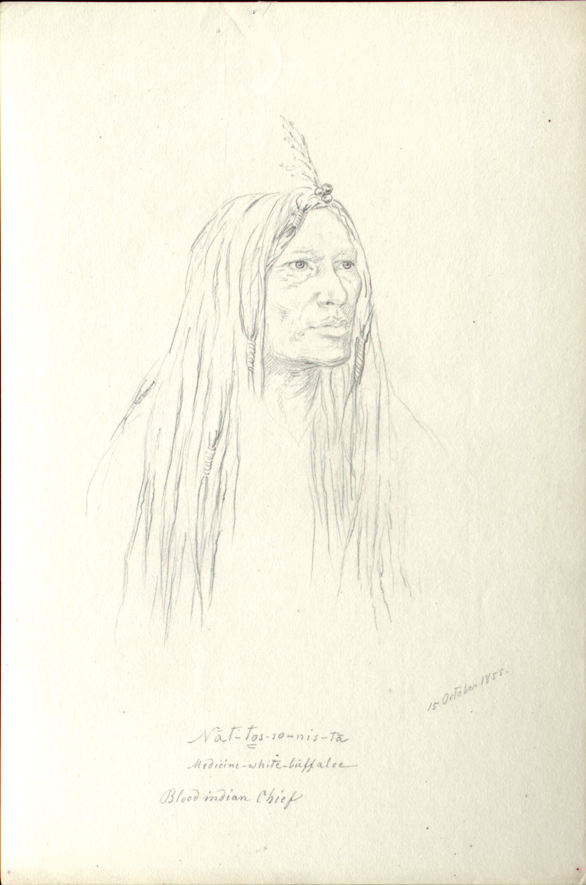 Nat-tos-so-nis-ta  Medicine-white-buffaloe  Blood Indian Chief