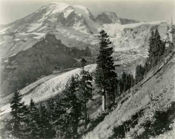[View of Mount Rainier and Nisqually Glacier]