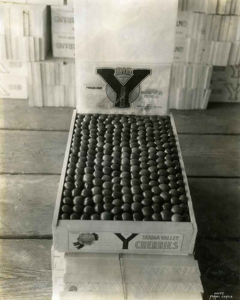 Crate of Bing Cherries