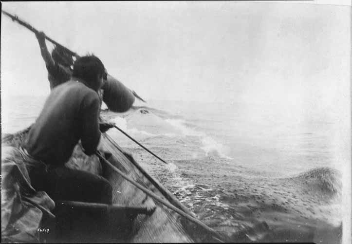 Neah Bay Whaler