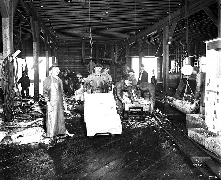[San Juan Fish Company Workers Packing Fish into Boxes, Seattle]