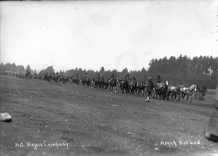 31st Wagon Company [Camp Lewis, Pierce County]