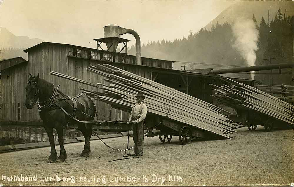 North Bend Lumber Company Hauling Lumber To The Dry Kiln