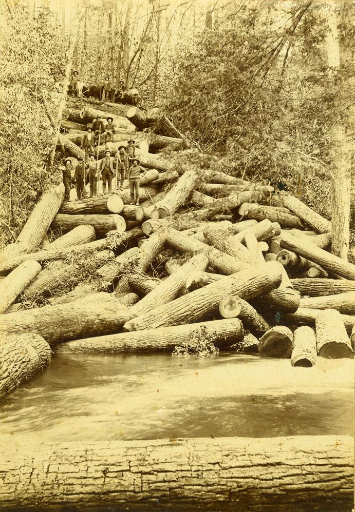 Loggers standing on log jam