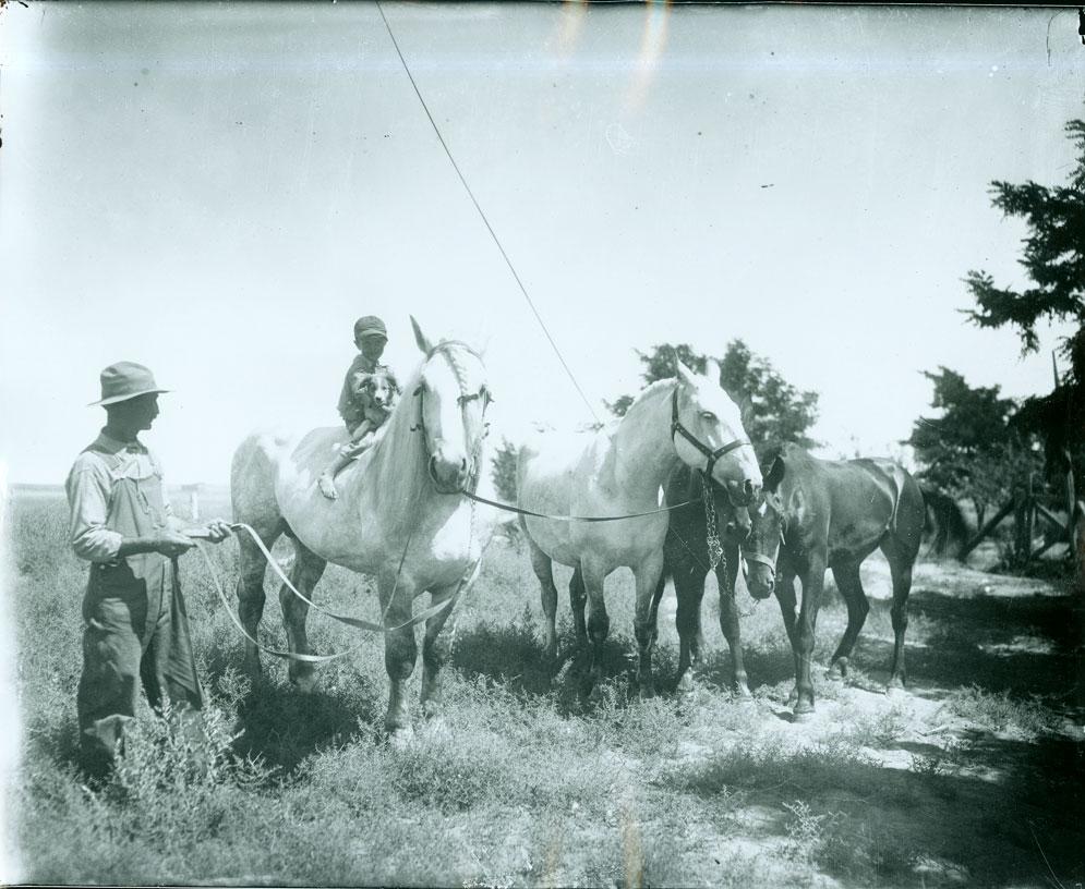 Little boy on horse near Prosser,  WA