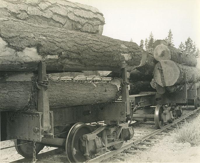 Log train, J. Neils LUmber Co.]