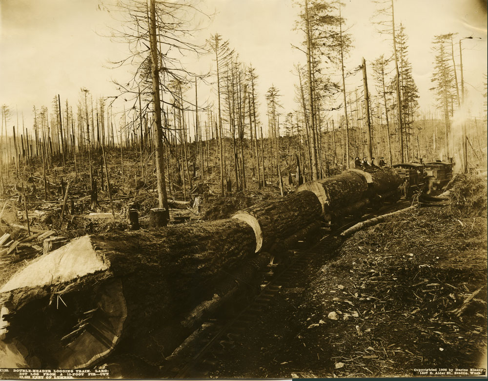 X135  Double-header logging train.  Largest log from a 12 foot fir - cut 43,462 feet of lumber.