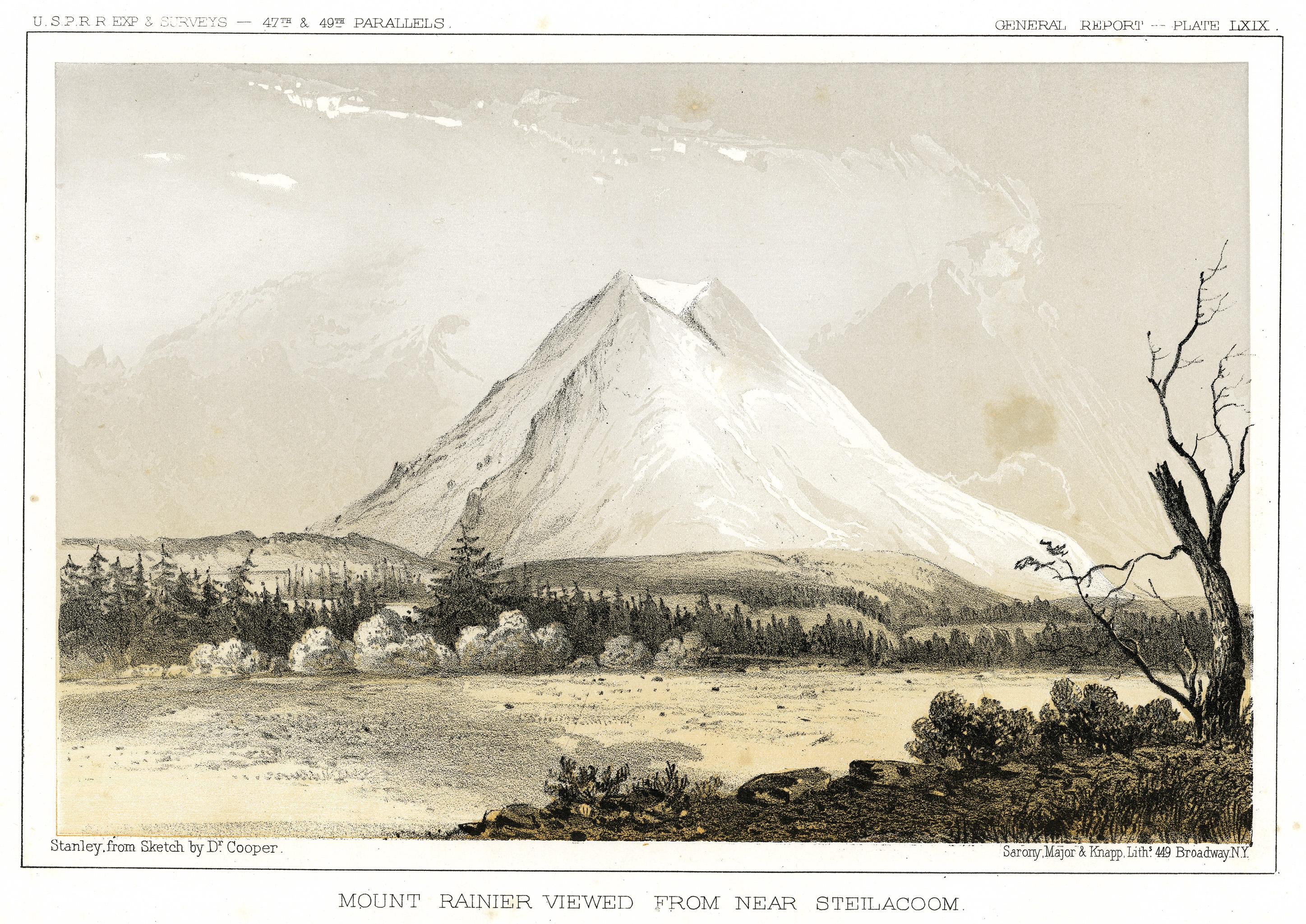Mount Rainier Viewed From Near Steilacoom