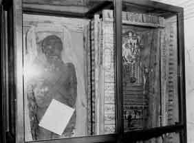 Ankh-Wennefer (Egyptian Mummy) Exhibit