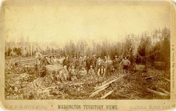 Group of Indian Hop Pickers, W.T.