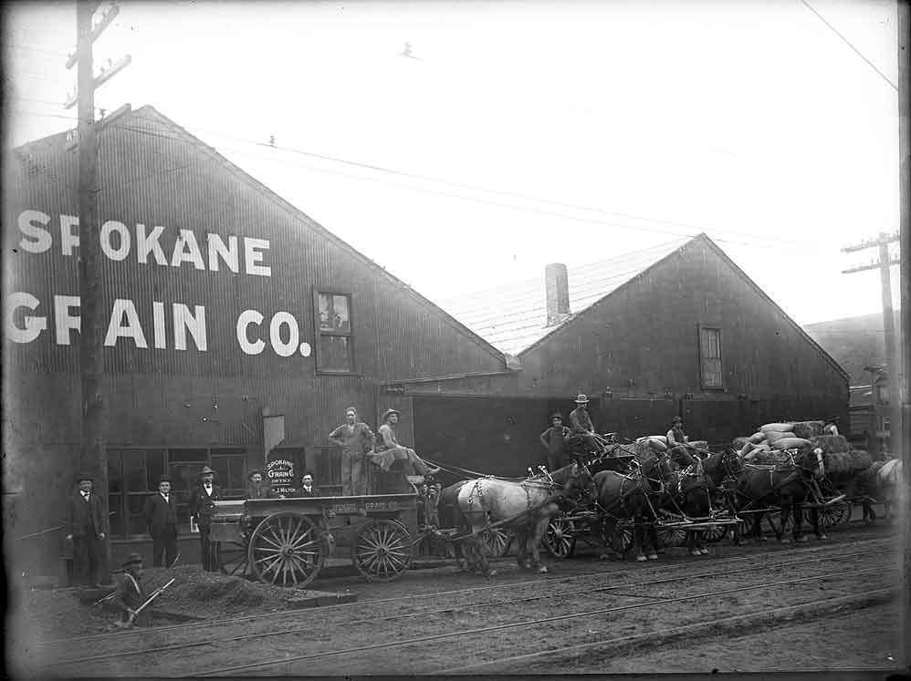 [delivery wagon in front of Standard Paint Co., Seattle, WA]