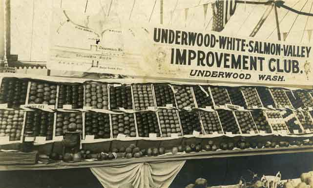 [Apple Exhibit] from the Underwood-White-Salmon-Valley Improvement Club, Underwood, Wash.