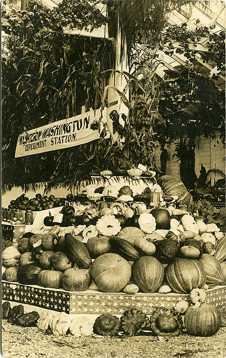 [Produce Display, Western Washington Experiment Station, Puyallup, WA]