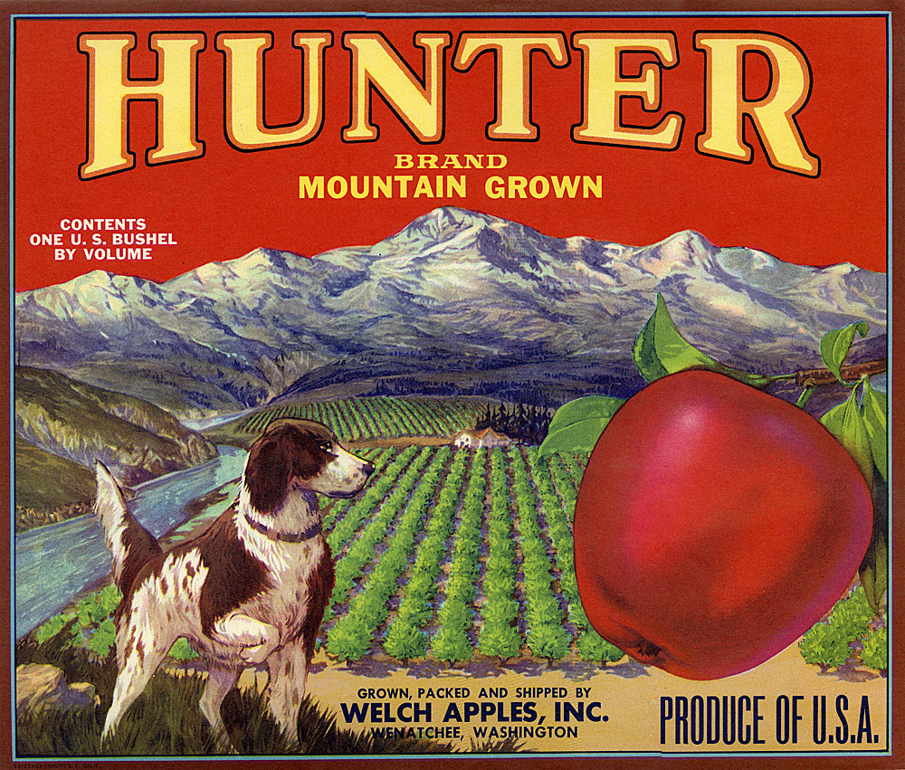 Hunter Brand, Mountain Grown [Apples]