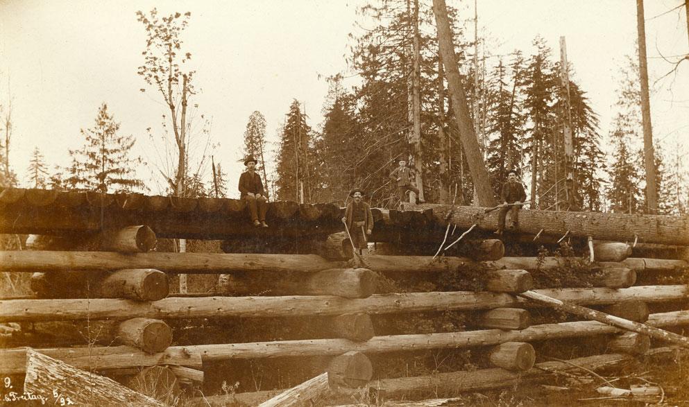[Logging bridge]