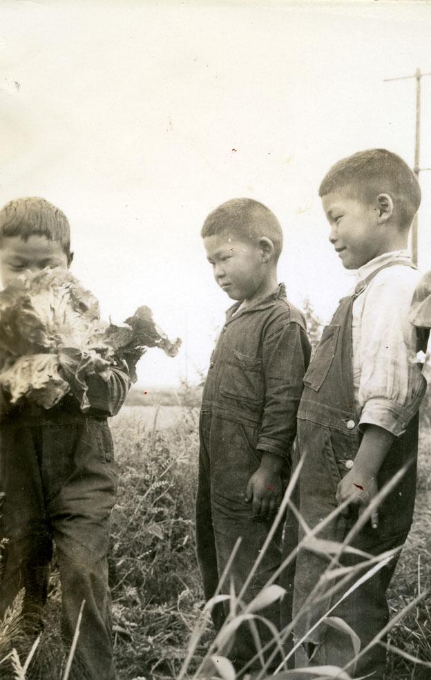 Three Japanese Boys and Cauliflower, 1938