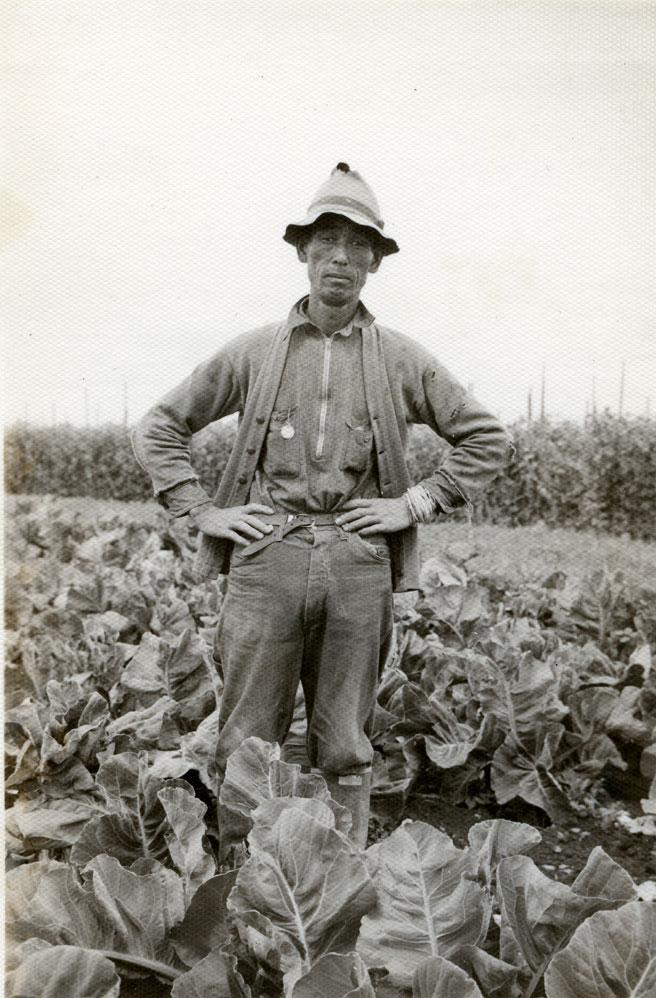 Okamoto and His Cauli [flower], 1938